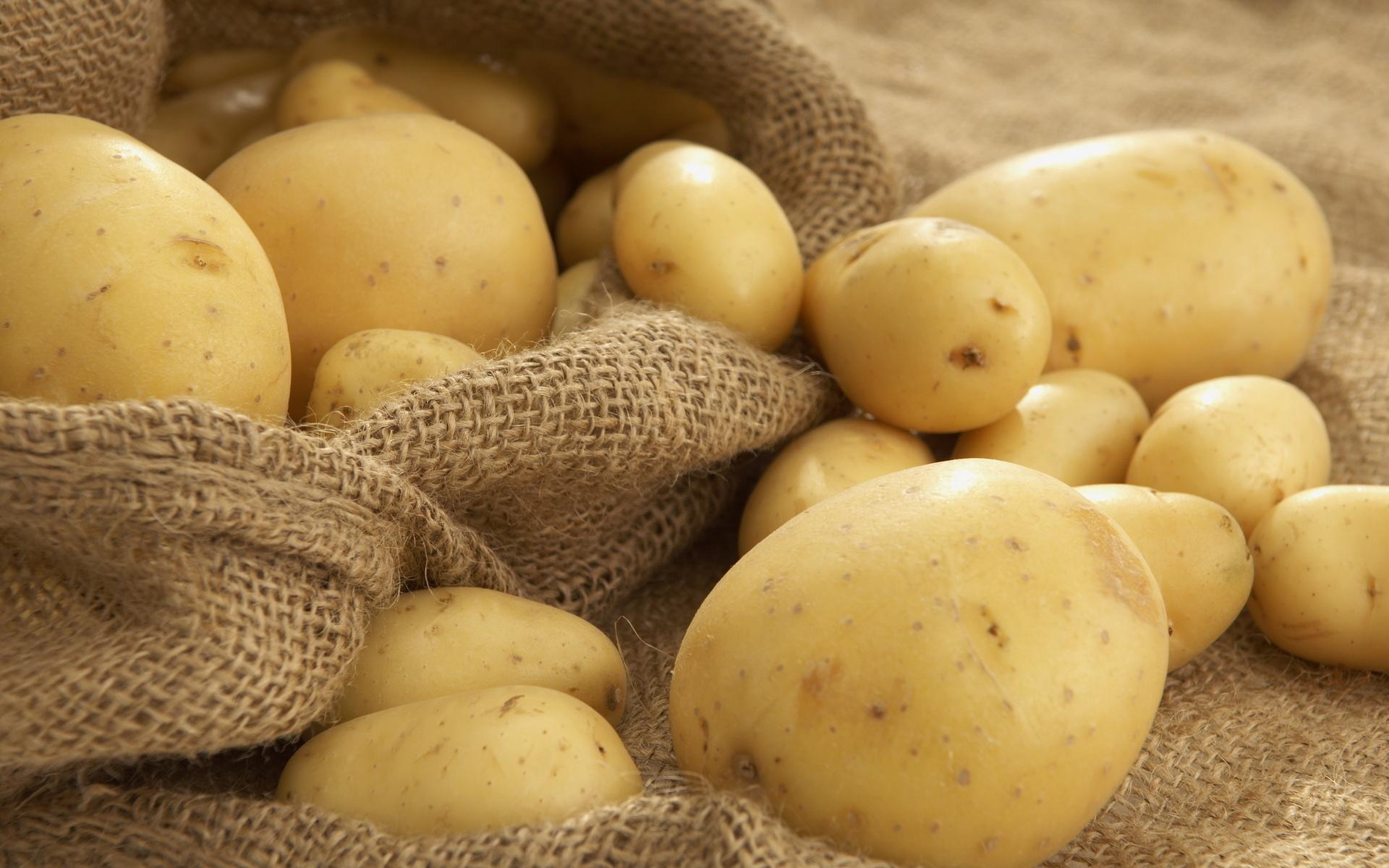 wcierka z ziemniaka