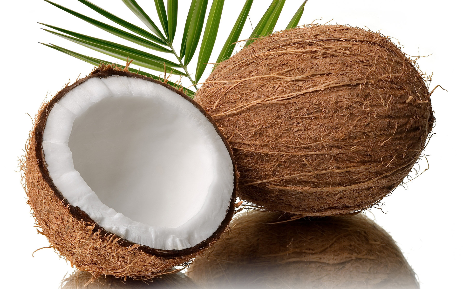 olej kokosowy włosy